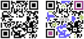 Small QR Codes - one is black-and-white and one is black, purple and pink.